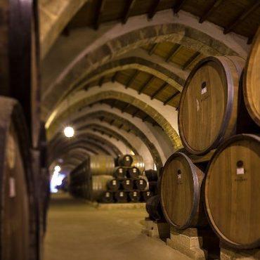 Western Sicily Winery